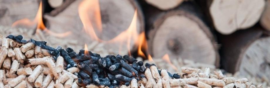 Biomasa, una buena solución.